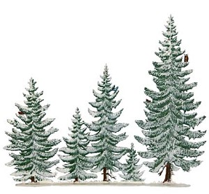 "Wilhelm Schweizer ""Winter Pines Group"""